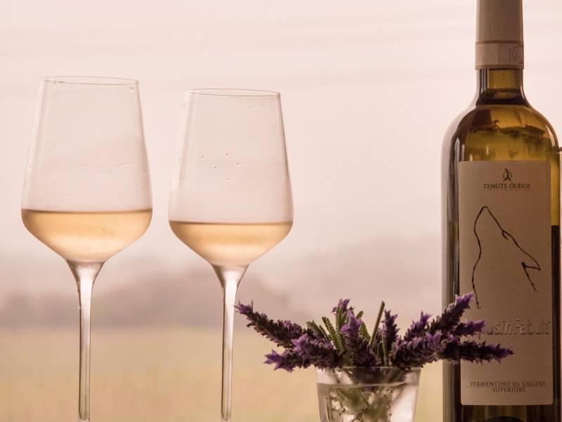il vino per l'antipasto di capodanno con tenute olbios